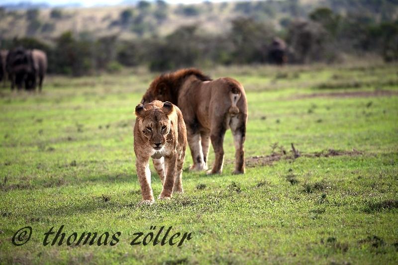 kenya_april_2015_day3_202