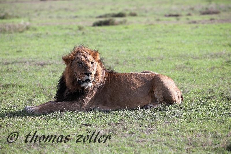 kenya_april_2015_day3_211