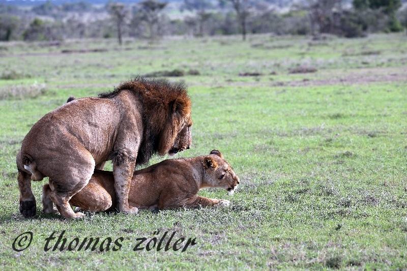 kenya_april_2015_day3_215