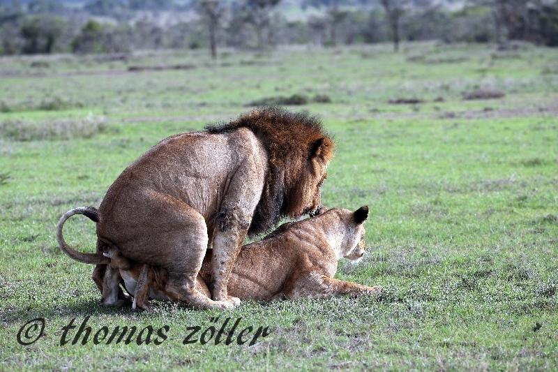 kenya_april_2015_day3_217