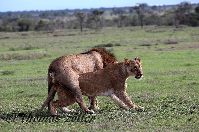 kenya_april_2015_day3_219