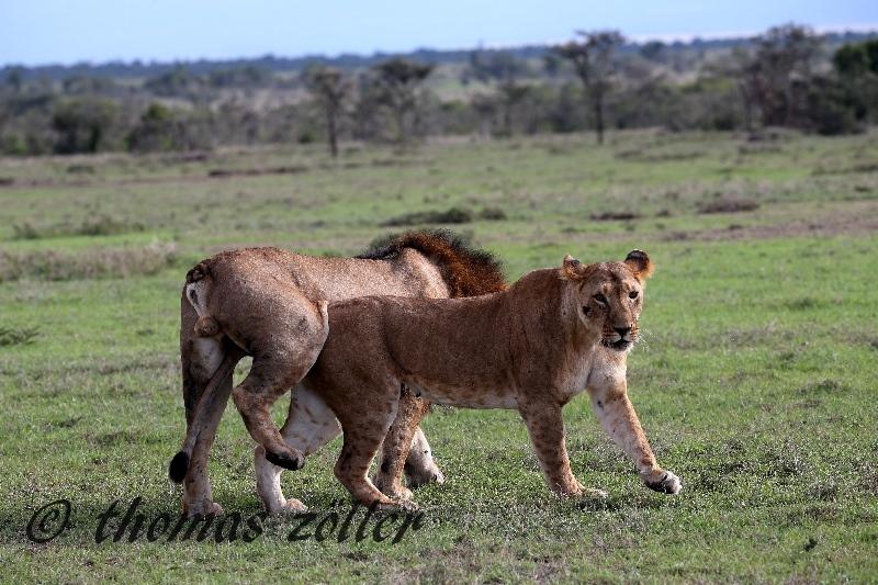 kenya_april_2015_day3_220