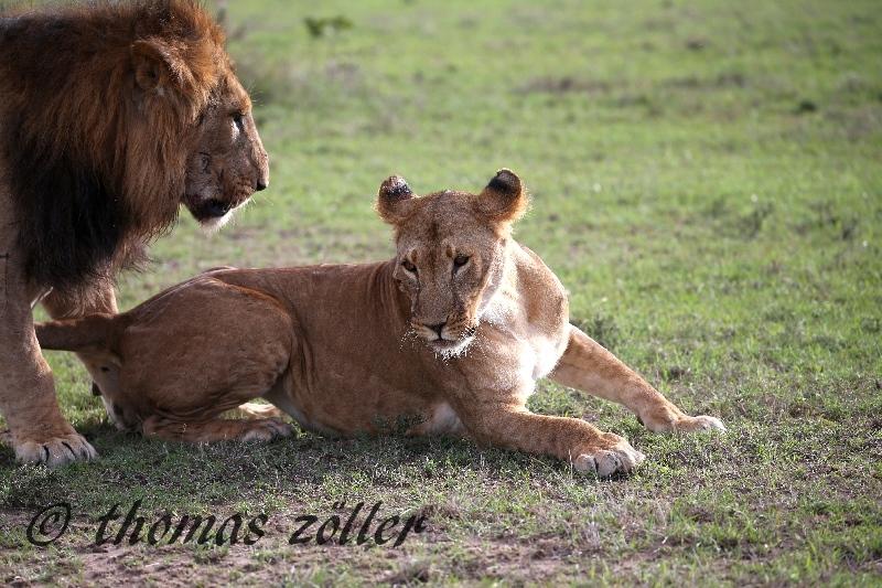 kenya_april_2015_day3_234
