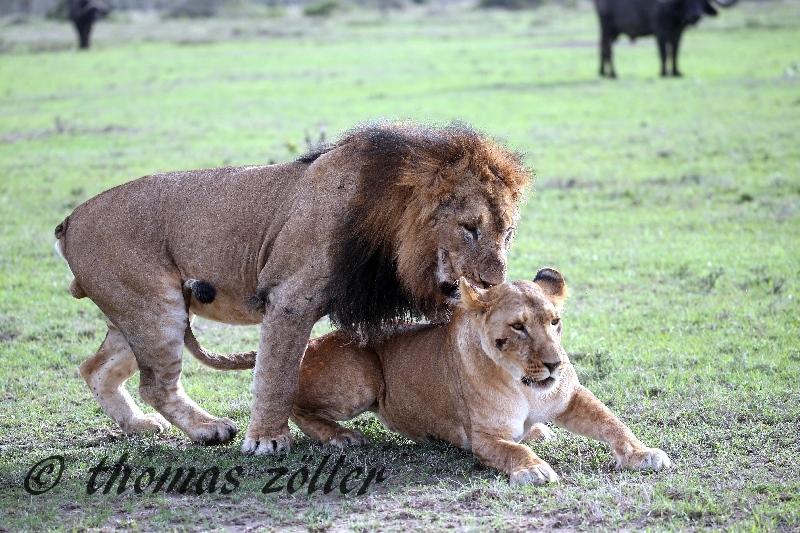 kenya_april_2015_day3_236