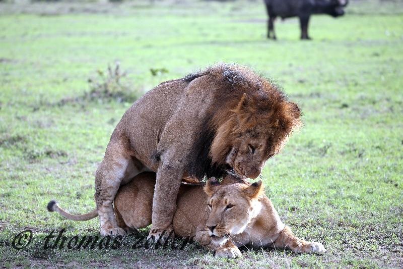 kenya_april_2015_day3_239