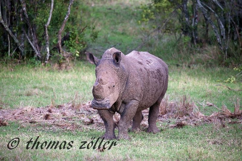 kenya_april_2015_day3_245