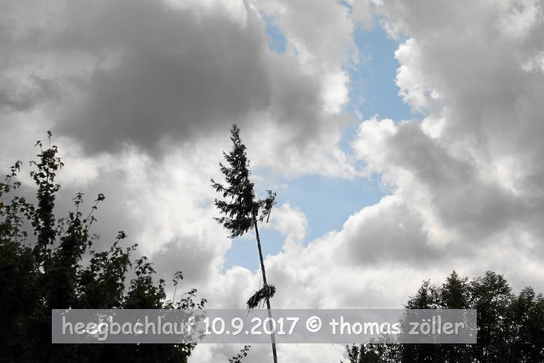20170910heegbachlauf_114