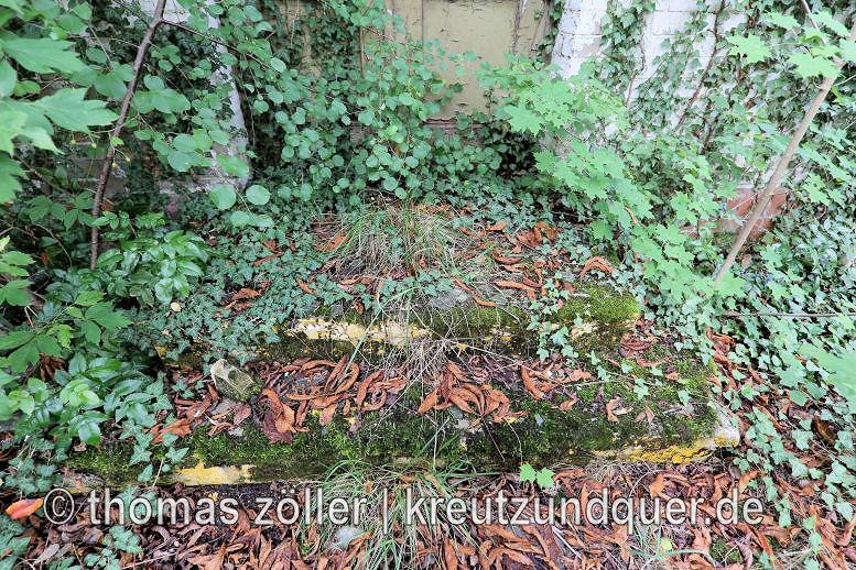 20170711_konversionsflaeche_122