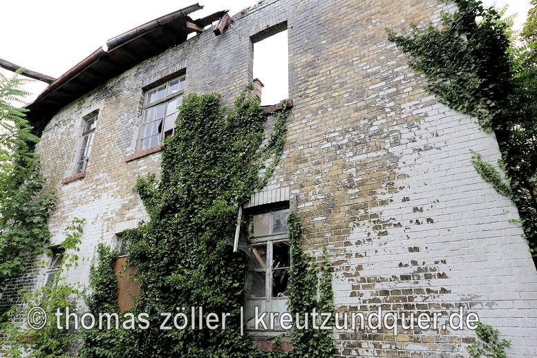 20170711_konversionsflaeche_161