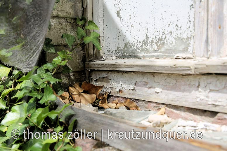20170711_konversionsflaeche_184