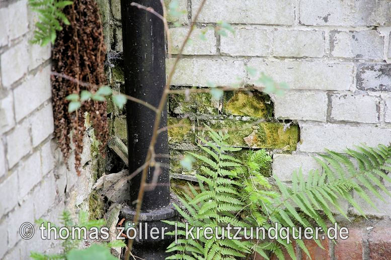 20170711_konversionsflaeche_199