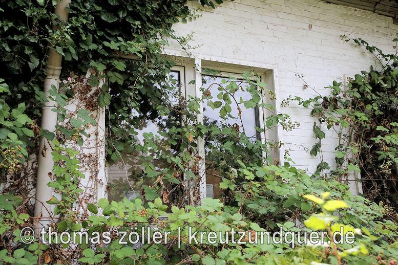 20170711_konversionsflaeche_208