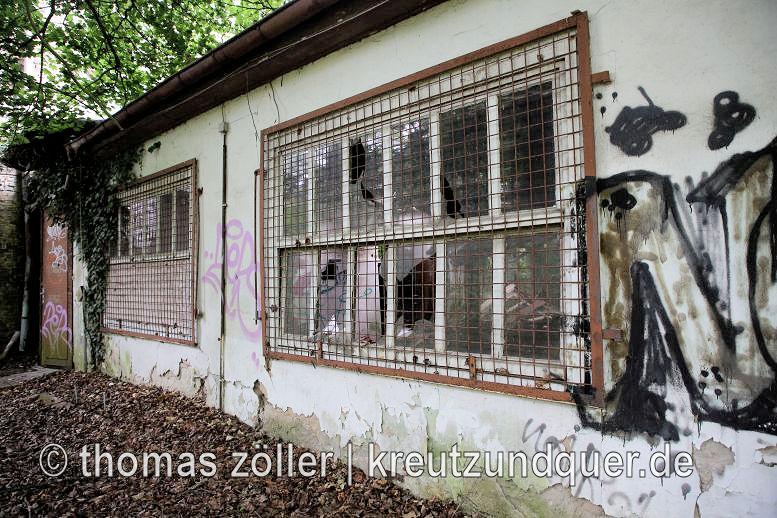 20170711_konversionsflaeche_222