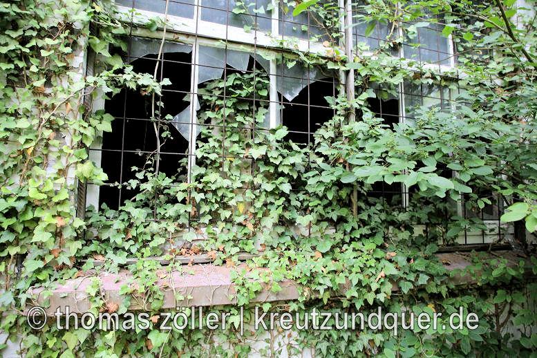 20170711_konversionsflaeche_237