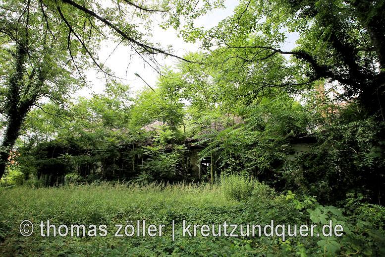 20170711_konversionsflaeche_251