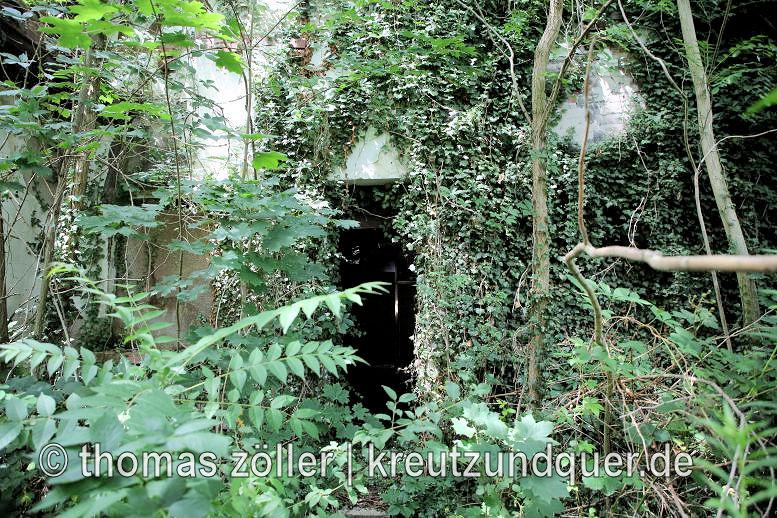 20170711_konversionsflaeche_254