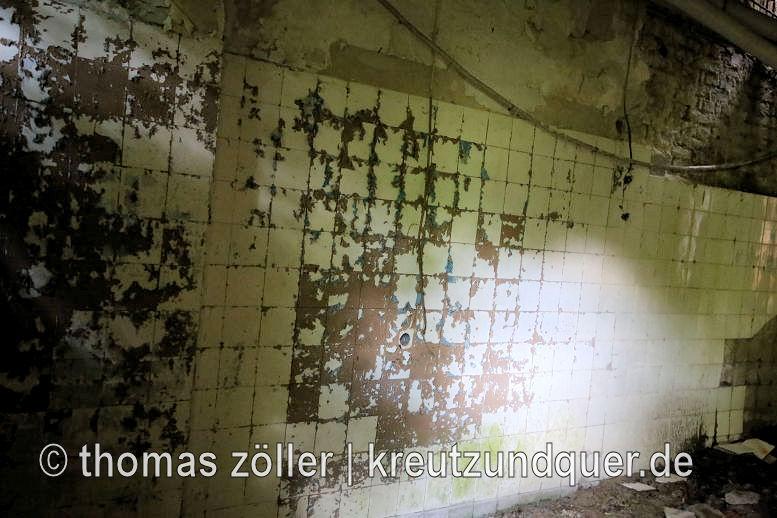 20170711_konversionsflaeche_258