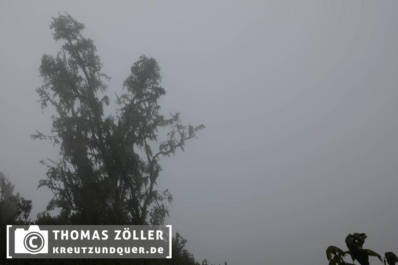 20180711rwenzori_223