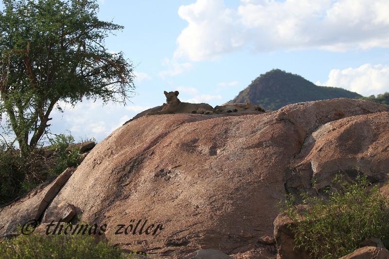 kenya_april_2015_day5_191