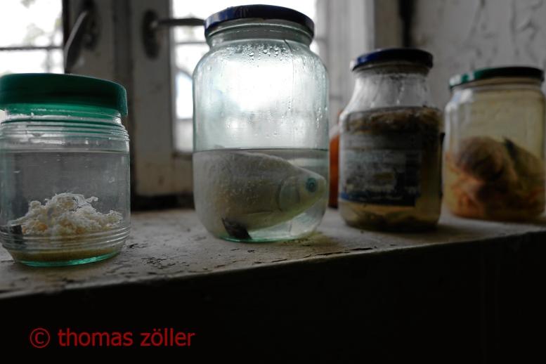 2017tschernobyl_3_154