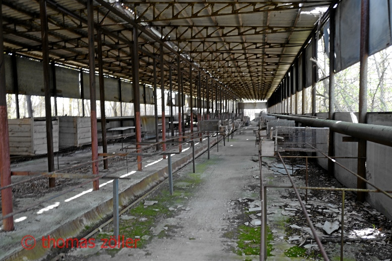 2017tschernobyl_3_179