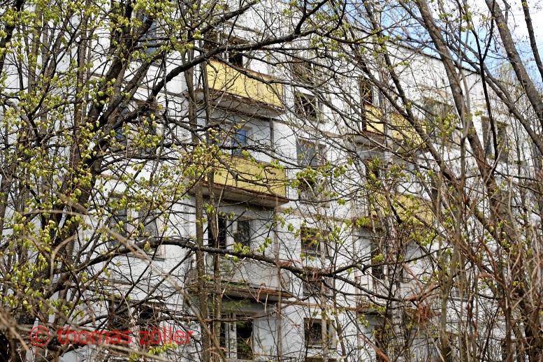2017tschernobyl_5_326