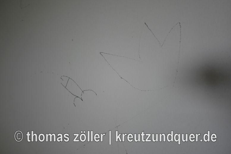 20170728_griesheim_121