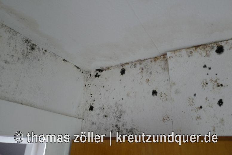 20170728_griesheim_186