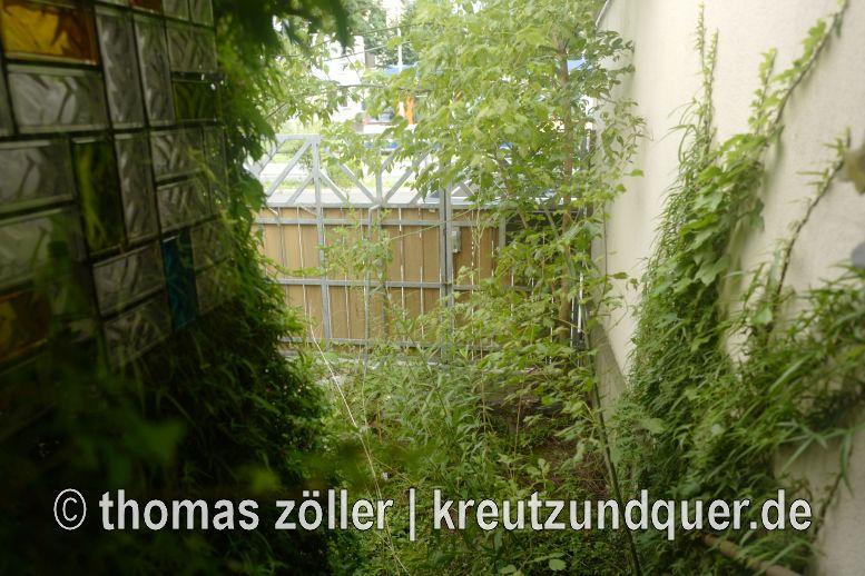 20170728_griesheim_202