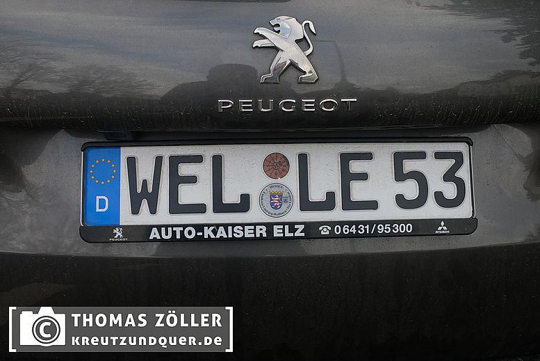 welle 53
